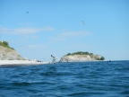 What I did today on the Adirondack Coast…… Four Brothers Islands