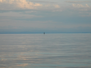 A person walking less than knee deep along a shallow sand bar in Lake Champlain.