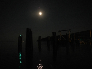 The Pilings from the Port Kent ferry dock.