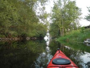 Scomotion Creek